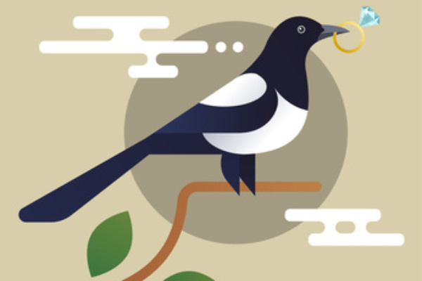 Marketing magpie definition